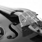 Geige_sw